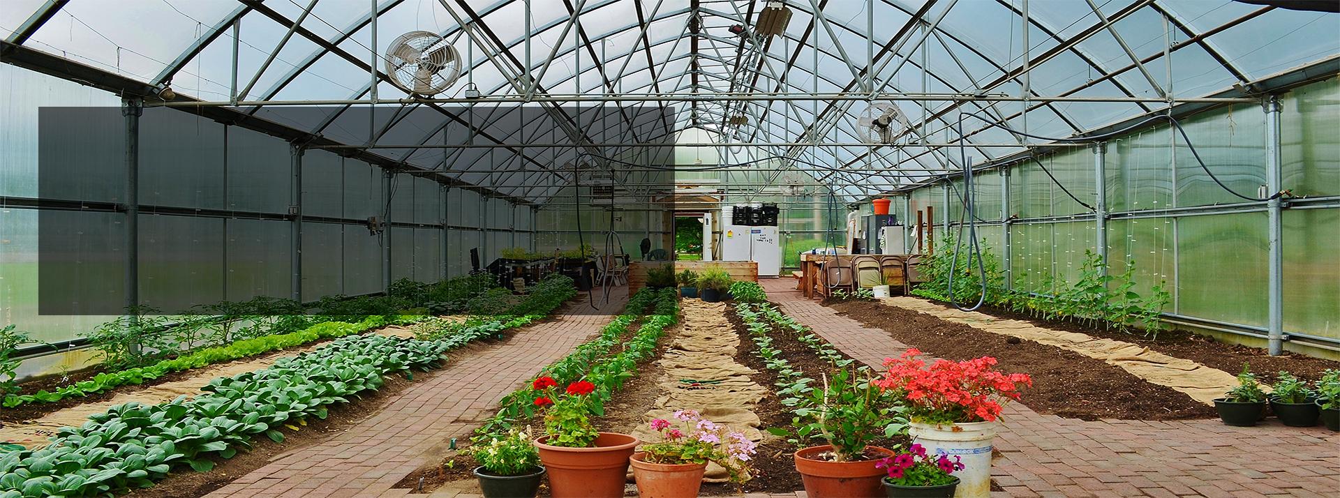 Hunter Park GardenHouse Programs